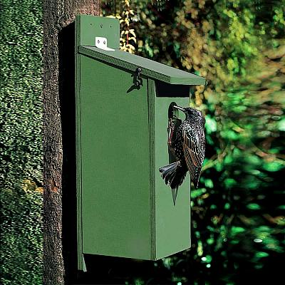 Starling 45mm Nest Box